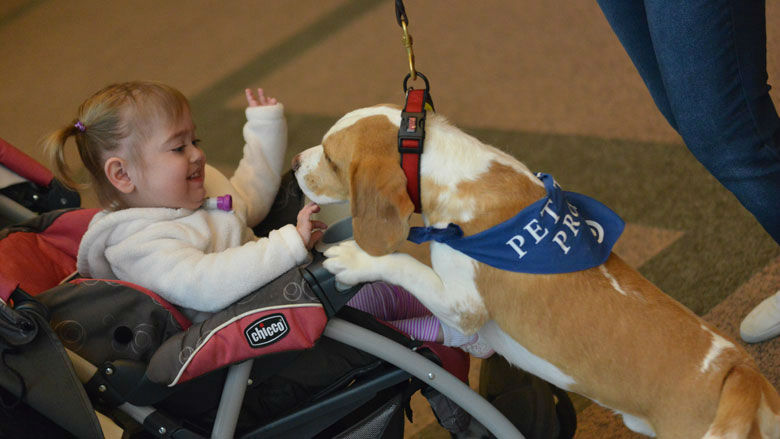 CLD patient with therapy dog at the 2016 reunion