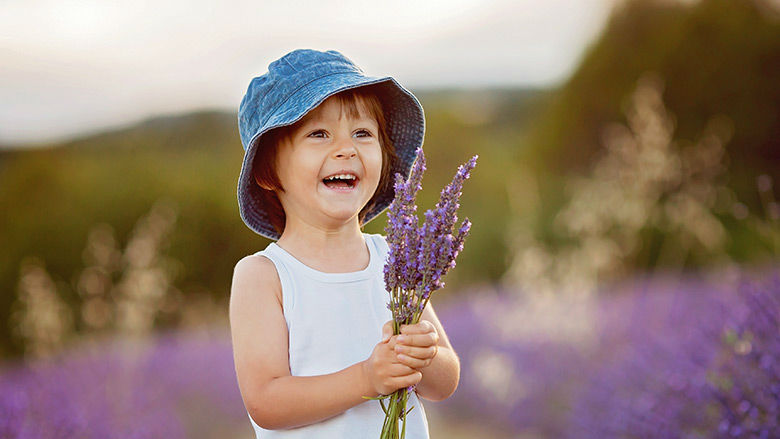Young child in lavender field