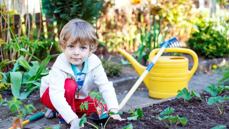 Young boy in garden
