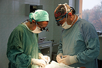 Image of Drs. Jackson and Vástyán repairing cleft palate in Ukraine.