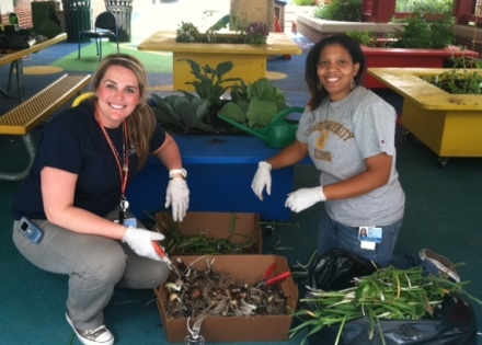 CHOP staff plant vegetables in the Sea Garden at Children's Seashore House.