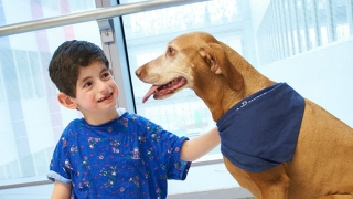 Young male patient petting dog