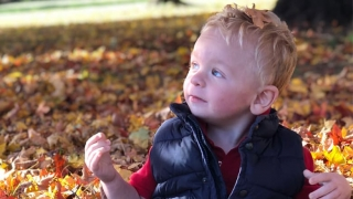 Mason playing in the leaves