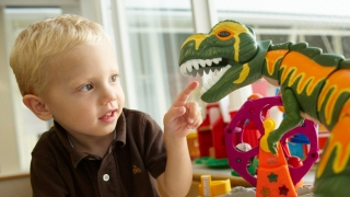 Young Child with Toys Photo