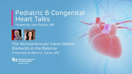 The Atrioventricular Canal Defect: Elements in the Balance