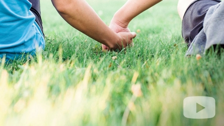 Kids holing hands while sitting in the grass