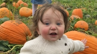 Frances sitting in a pumpkin patch