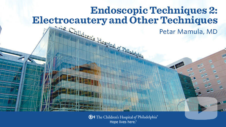 Endoscopic Techniques 2: Electrocautery and Other Techniques